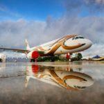 "Бизнес-оператор ""Меридиан"" начал эксплуатацию A320 в VIP-версии"